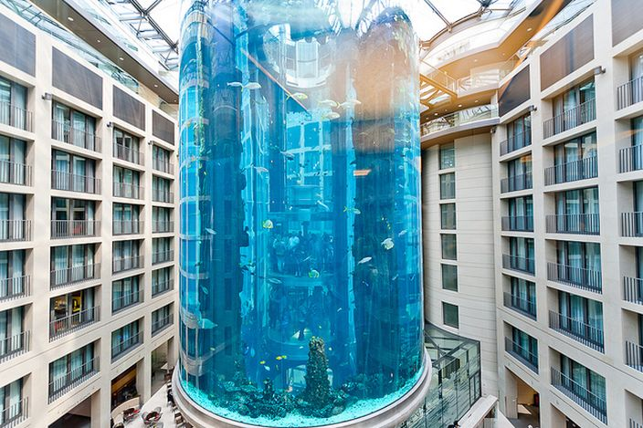 10 Largest, Biggest & Best Aquariums In the World