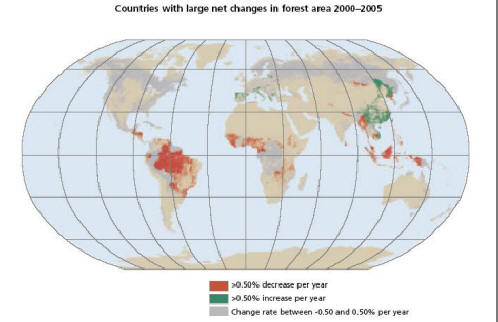 world map of changes in forest area