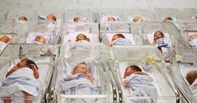 Babies in ward