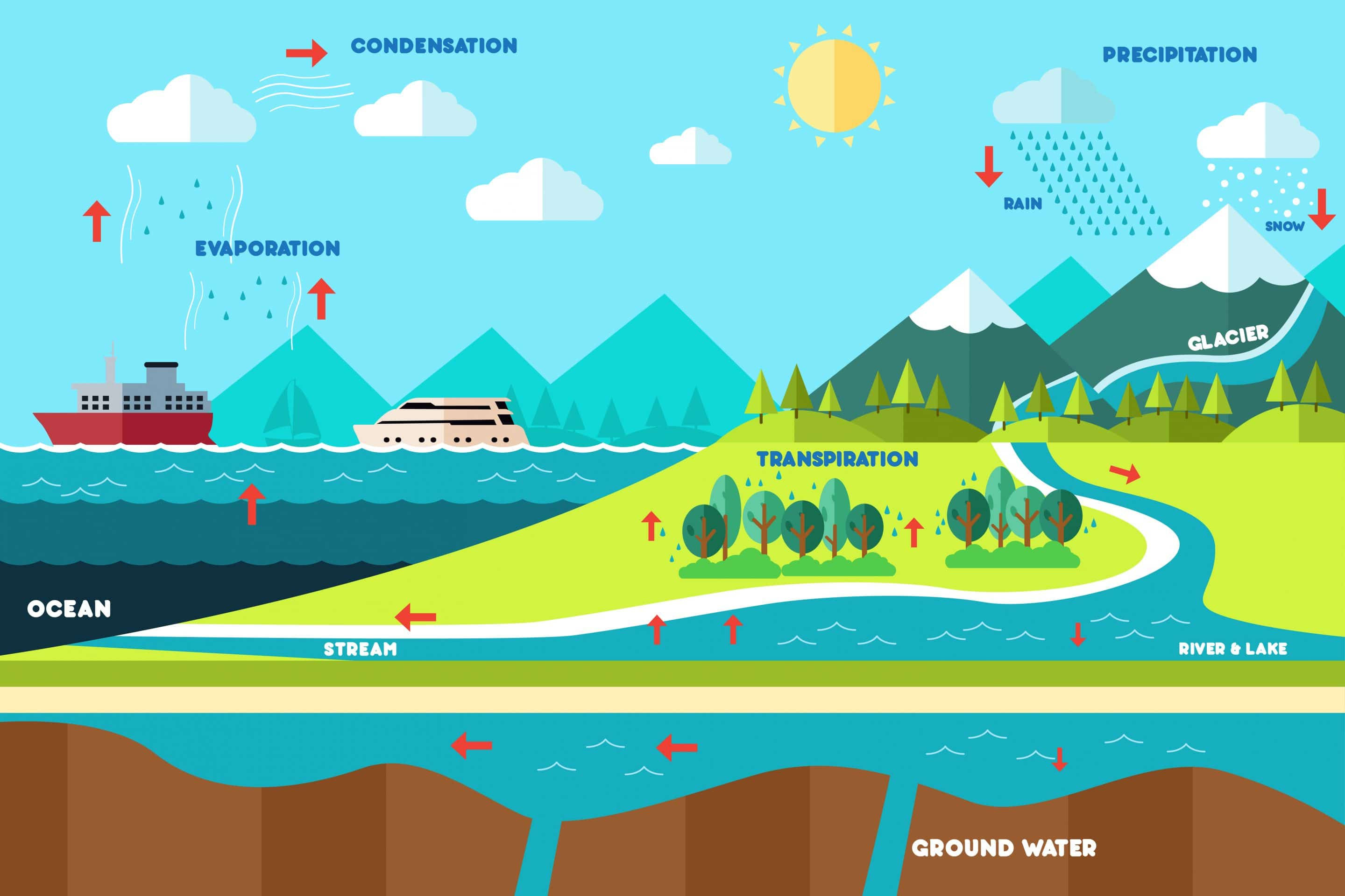 Water Cycle Diagram On Wiring Diagram