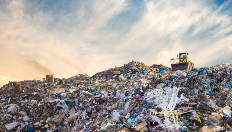 Environmental Degradation  What You Need To Know And Its Harmful  As