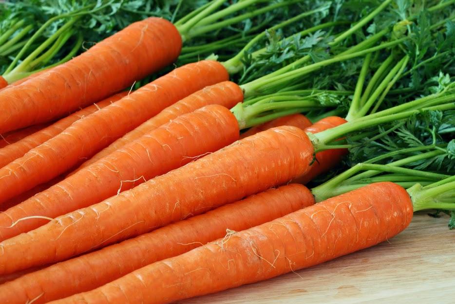 Imperator carrot family