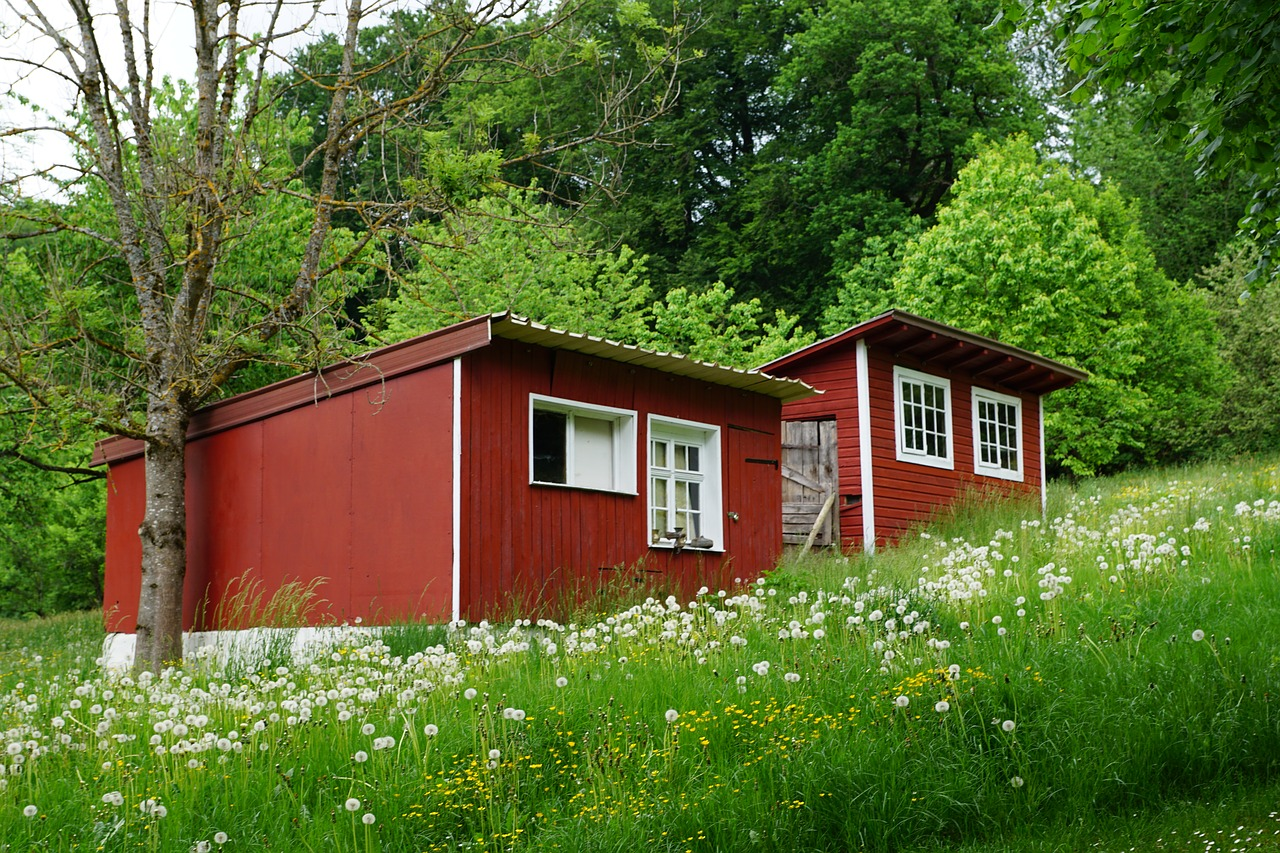 a tiny house built on a beautiful and green environment