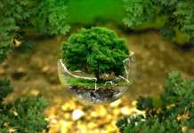 how can resource conservation benefit the environment
