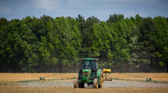 green tractor in the field